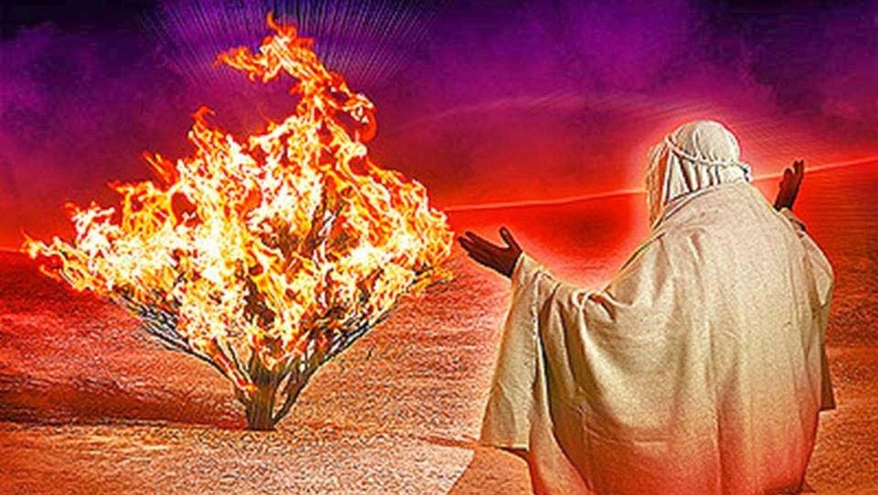 Bible Historian Confirms Moses Was Tripping Balls While Talking To Burning Bush