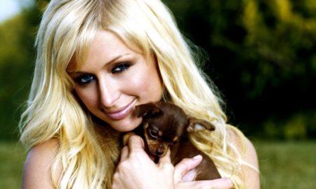 Paris Hilton Opens Nightclub For Dogs