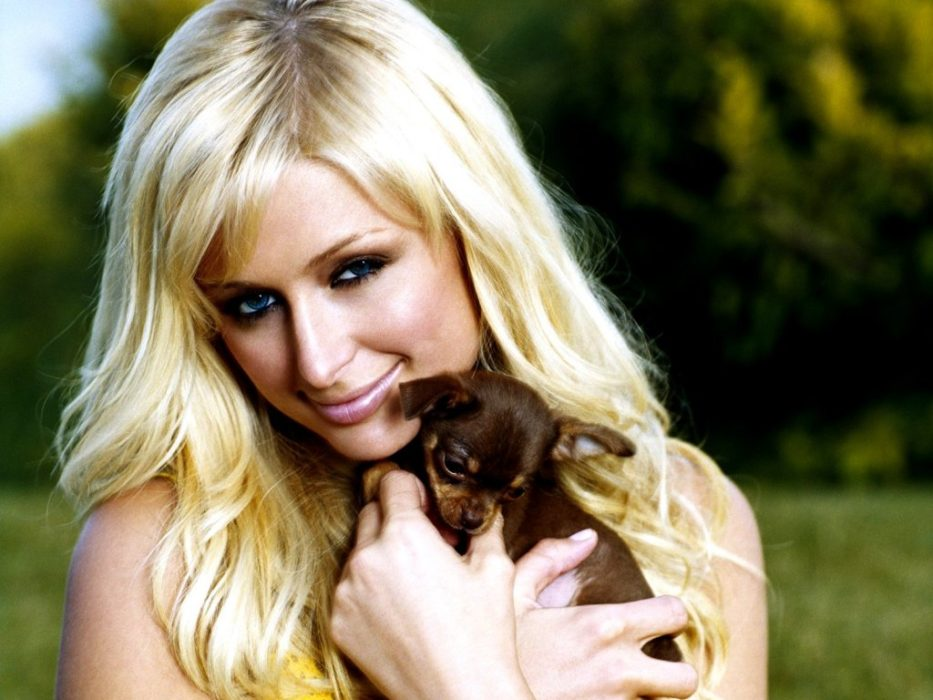 Paris Hilton Opens Nightclub For Dogs