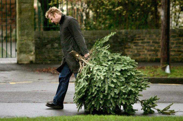 soundcloud take down djs christmas decorations - When To Take Down Christmas Decorations